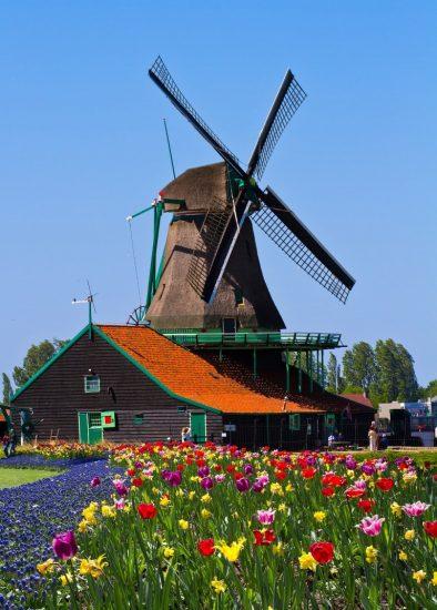 Ik hou van Holland quiz - groepsactiviteiten - Smaakmakers 1